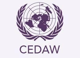 Informe Sombra CEDAW Publicado