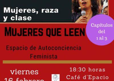 Leyendo feminismos: MUJERES, RAZA Y CLASE.